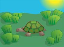 Pequeña tortuga en un prado libre illustration