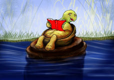 Pequeña tortuga que lee un libro Imagen de archivo