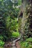 Pequeña trayectoria al lado de la piedra en montaña Foto de archivo