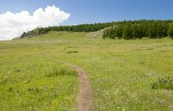 Pequeña trayectoria de la montaña Foto de archivo libre de regalías