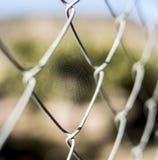 Pequeña web de araña en una cerca del metal imagen de archivo