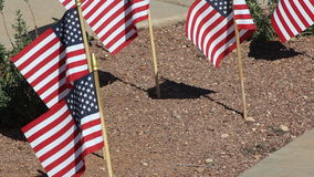 Pequeñas banderas americanas en renunciar de tierra almacen de metraje de vídeo
