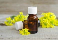 Pequeñas botellas de aceite esencial natural herbario o de extracto de las flores, tinte, perfume Foto de archivo