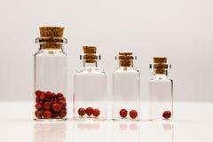 Pequeñas botellas de cristal con la pimienta roja Fotos de archivo
