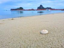 Pequeñas cáscaras en la playa con opiniones hermosas del mar Fotos de archivo libres de regalías