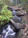 Pequeñas caídas Foto de archivo libre de regalías
