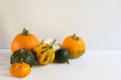 Pequeñas calabazas de Halloween en los tablones blancos, decoración del día de fiesta, con el espacio de la copia fotos de archivo libres de regalías