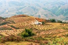 Pequeñas casas entre la cultura del arroz en las montañas de Sapa Imagen de archivo libre de regalías
