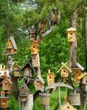 Pequeñas casas para los pájaros Fotos de archivo libres de regalías
