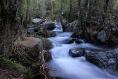 Pequeñas cascadas en el canal de río Fotografía de archivo