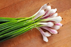 Pequeñas cebollas blancas frescas Imagenes de archivo