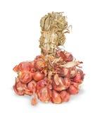 Pequeñas cebollas rojas del chalote. fotos de archivo libres de regalías