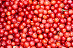 Pequeñas cerezas rojas Imágenes de archivo libres de regalías