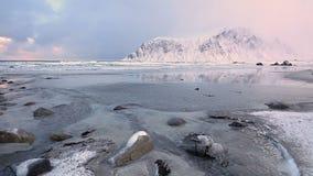 Pequeñas corrientes en la playa del invierno metrajes