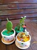 Pequeñas floras en la tabla Fotografía de archivo