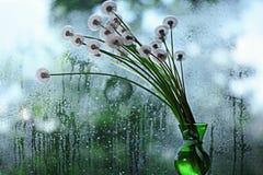 Pequeñas flores salvajes azules Fotografía de archivo