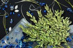 Pequeñas flores y rama azules con las hojas verdes Imagen de archivo libre de regalías