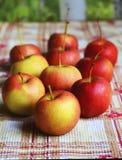 Pequeñas manzanas Imagenes de archivo