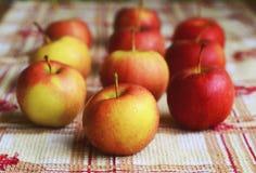 Pequeñas manzanas Fotografía de archivo libre de regalías