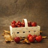 Pequeñas manzanas rojas en una cesta Foto de archivo