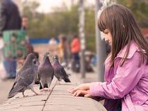 Pequeñas muchacha y palomas caucásicas Imágenes de archivo libres de regalías