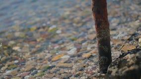 Pequeñas ondas que traslapan y que retroceden en el tubo oxidado de la playa rocosa almacen de video