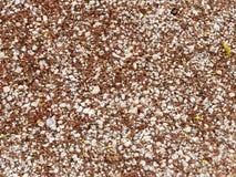 Pequeñas piedras en la tierra Foto de archivo libre de regalías