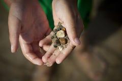 Pequeñas piedras en manos Fotos de archivo libres de regalías