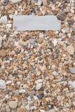Pequeñas piedras y cáscaras del mar en el papel texturizado, con un espacio libre bajo el texto, el título, el anuncio, el menú o Fotos de archivo libres de regalías