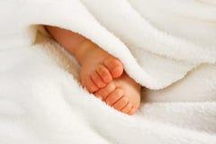 Pequeñas piernas del bebé foto de archivo
