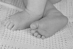 Pequeñas piernas del bebé recién nacido en la manta, primer lindo de la piel Fotos de archivo libres de regalías
