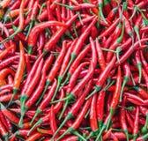 Pequeñas pimientas de chile rojo en mercado Fotografía de archivo libre de regalías