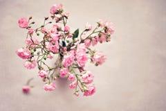 Pequeñas rosas rosadas en un florero, fondo de la textura Fotos de archivo libres de regalías