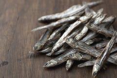 Pequeñas sardinas secadas Imagen de archivo libre de regalías