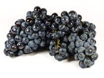 Pequeñas uvas rojas Fotos de archivo libres de regalías