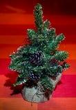Pequeño árbol decorativo Fotografía de archivo