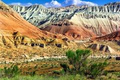 Pequeño árbol en las montañas del desierto en el fondo y el cielo nublado Imagen de archivo libre de regalías