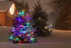 Pequeño abeto al aire libre hermoso adornado para el SE de las vacaciones de invierno Fotografía de archivo libre de regalías