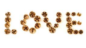 Pequeño amor de madera del encanto de los shelles Fotografía de archivo