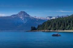 Pequeño barco del reloj de la ballena en Juneau fotografía de archivo libre de regalías