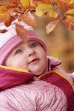 Pequeño bebé en bosque Imagen de archivo