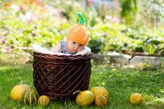 Pequeño bebé en una cesta Fotografía de archivo