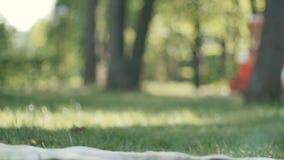 Pequeño bebé lindo que juega con el oso de peluche en parque almacen de video