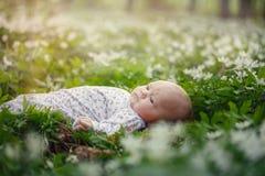 Pequeño bebé lindo que miente en la hierba en el parque en día de verano fotografía de archivo libre de regalías