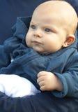 Pequeño bebé recién nacido en chaqueta azul Imagen de archivo
