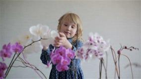 Pequeño bebé rubio lindo con el pelo rizado entre orquídeas florecientes almacen de video