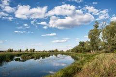 Pequeño bosque del río imagen de archivo libre de regalías
