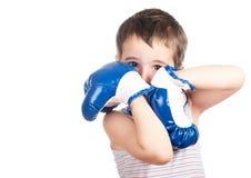 Pequeño boxeador torpe fotos de archivo
