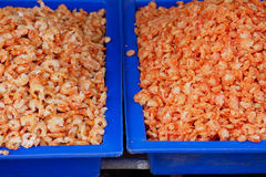 Pequeño camarón secado para cocinar en el mercado Fotografía de archivo