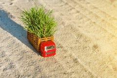 Pequeño camión del juguete de la Feliz Año Nuevo A con un árbol de navidad en un cou Imagen de archivo libre de regalías